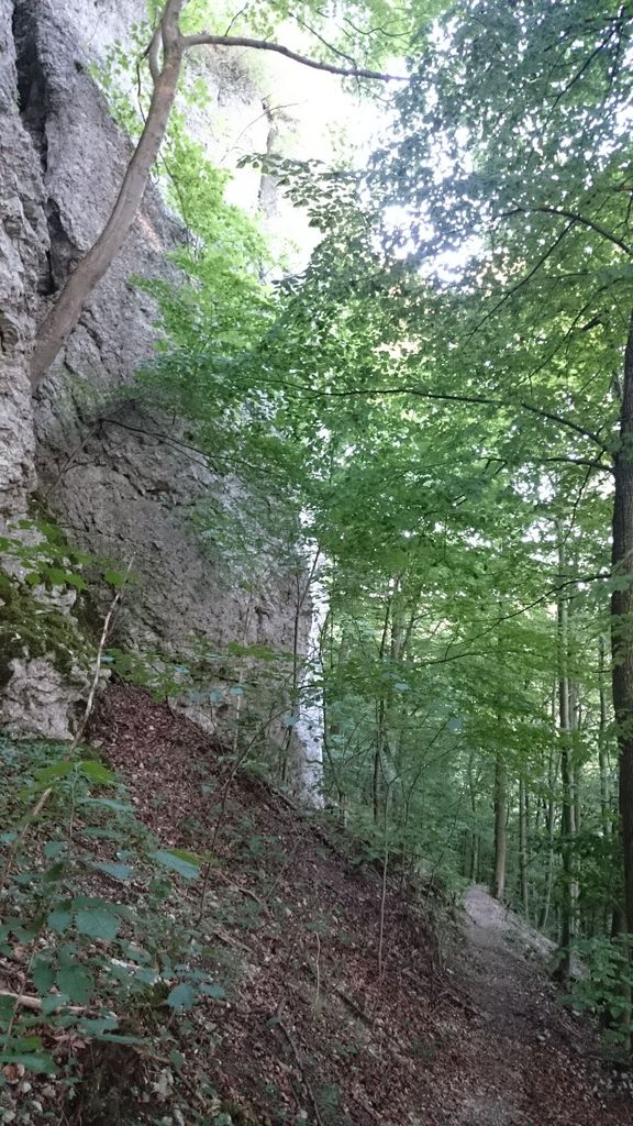 Tolle Trails am Brucker Fels